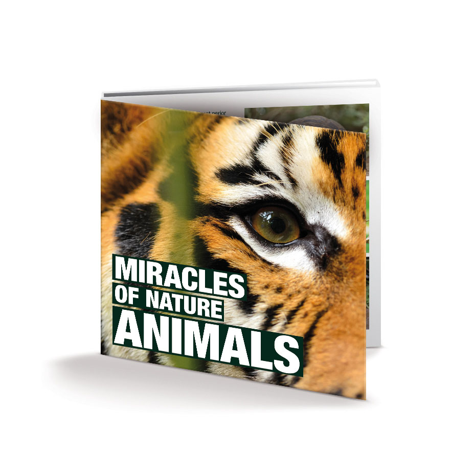 Miracels of nature Animal coins in folder